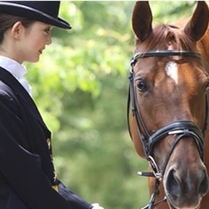 仙台で習いごとを探している方へ!おすすめの乗馬教室4選