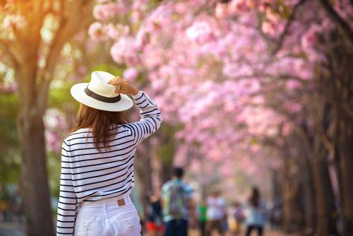 イエローベース春とは?