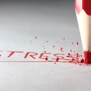 パレオライフで健康美人に!ストレスホルモンとストレスのメカニズム