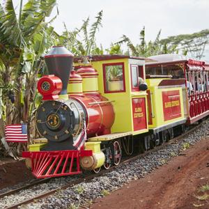 子連れでハワイにいくならココ!子供と一緒に楽しめるオススメスポット4選