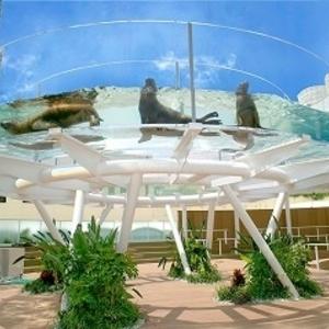 夏休みのお出かけにおすすめ!サンシャイン水族館の魅力とは