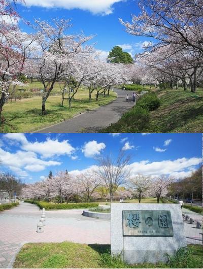 愛知の平和公園