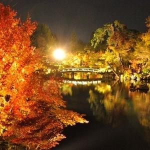 秋に訪れたい♪古都・京都のおすすめ紅葉スポット4選♡