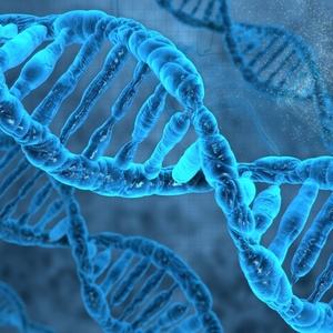 あなたはどのタイプ?〈遺伝子(DNA)別〉効果的なダイエット