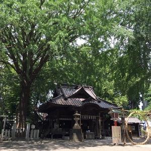 """6月30日は""""夏越の大祓""""!神社で半年に一度のデトックスを♪"""