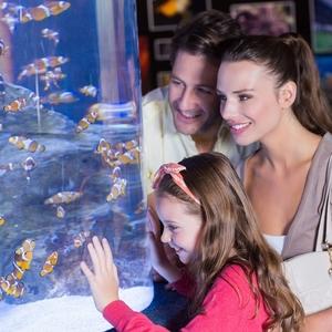 子連れに人気の水族館!新しくなったエプソンアクアパーク品川♪
