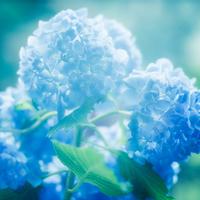 本命星が導く運勢のバイオリズム【6月(6/5~7/6)】の吉方位