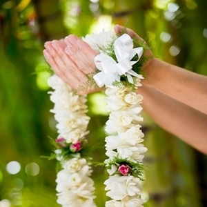 Hawaiiの楽しみ☆素敵な香りの「花 = pua」をご紹介!