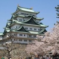 日帰りでも行ける!名古屋で食べたいおすすめご当地グルメ4選
