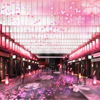 日本の優美な春を満喫♡日本橋『桜フェスティバル』を楽しむ方法