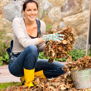 年末より今がベスト!「秋の大掃除」が経済的でエコである理由