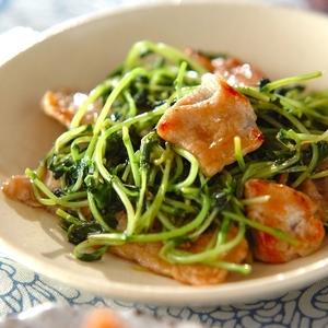 """野菜高騰!栄養満点の""""豆苗料理""""を賢く取り入れてみませんか?"""