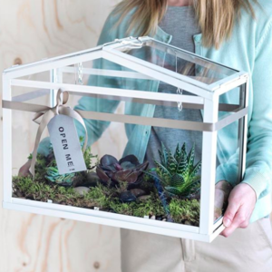 収納にも使えちゃう♪IKEA「ミニ温室」のおしゃれな活用アイデア