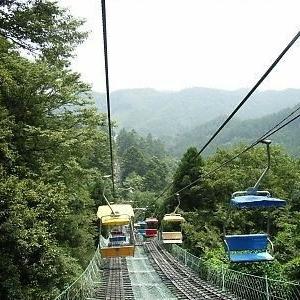 新緑の季節☆魅力いっぱいの『高尾山』でのんびり過ごしましょう♪