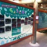 果物狩りならココ!年間15万人が訪れる平田観光農園が大人気♡