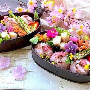 お花見にも最適!春の手作りお弁当のおしゃれなアイデア10選