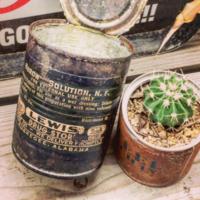 DIYに挑戦♪おしゃれな「リメイク缶✕多肉植物」のコーディネート