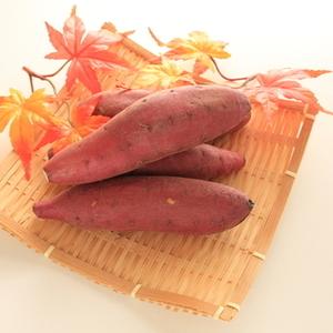 芋掘りの季節♪子ども同士のお芋をめぐる3つのかわいいエピソード♡
