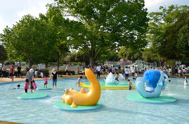 国営昭和記念公園の水あそび広場