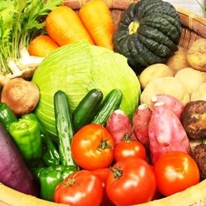 九州の野菜と有機無農薬米が自宅に届く♡《やお九州》の魅力とは