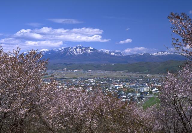 富良野の朝日ヶ丘公園