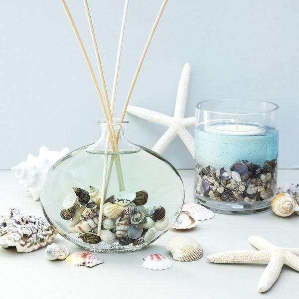 貝殻を入れた手作りリードディフューザー