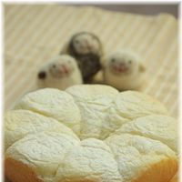 スイッチを入れるだけ♪簡単×安全×美味しい《炊飯器パンのレシピ》